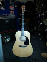 Martin D-1GT with case