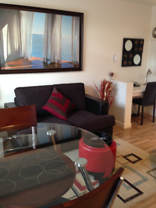 1 Bedroom Condo Furnished Summer or long term