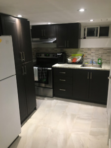 Must See Recently Renovated 2 Bedroom Basement in Upper Hamilton