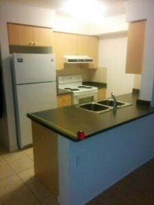 Selling Condo Kitchen - Great for Basement Rental Apt!