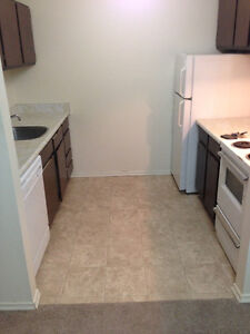 1 Bdrm Apartment for Rent - St. Lawrence Court - Northend