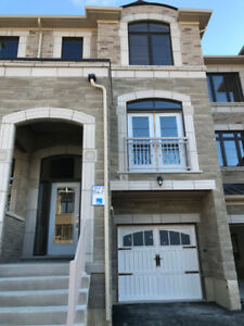 Brand New 4 Bedroom Townhouse for Rent-Vaughan - Vellore Village