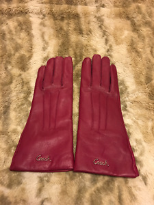 Coach Leather Gloves Size 6.5 Brand New!