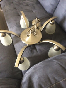 Brushed silver light fixture for sale