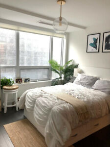 Furnished Luxury Studio For Lease at 88 Scott (Yonge/Wellington)