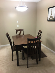 Furnished 2 Bedroom Sublet May 1-June 30 near UofM $1200