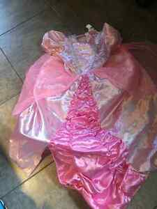 Girls princess costume
