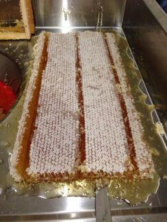 Ogranic raw honey Surry Hills Inner Sydney Preview