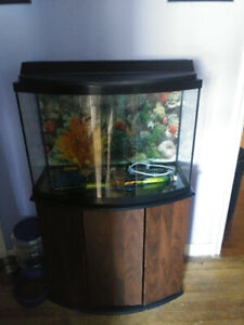 36 gallon bow-front tank and stand