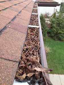 EAVESTROUGH CLEANING / GUTTER CLEANING / WINDOW CLEANING London Ontario image 1