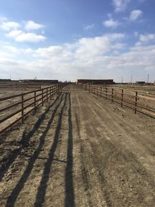 Cattle Fencing Kits
