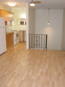 St Boniface  1 BR Condo nice location near Downtown + The Forks