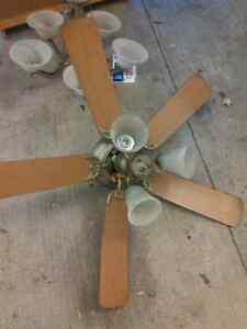 Ceiling fan Sarnia Sarnia Area image 1