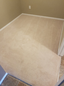 2 CARPETS IN EXCELLENT CONDITION! $75 EACH - GREAT DEAL!
