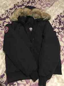 fausse canada goose chilliwack