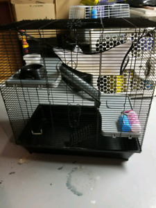 Rats or hamster cage