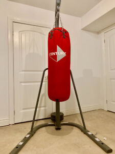 Boxing bag with Stand and gloves