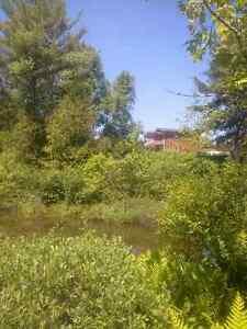 Chalet à vendre bord de l'eau / Cottage for sale waterfront Gatineau Ottawa / Gatineau Area image 8