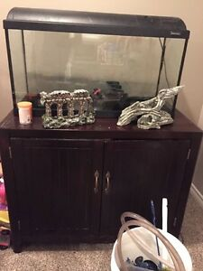 Fish tank, stand, everything you need