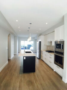 Brand New Townhouse With Rooftop Patio In South Surrey