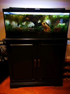 20 gallons long for sale
