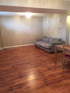 MATURE INDIVIDUAL SHARE 2 BR APARTMENT WITH MATURE  WORKING MAN.