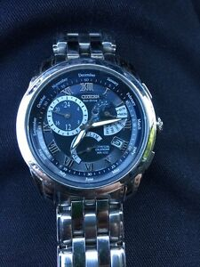 Citizen perpetual calendar CALIBRE 8700 watch