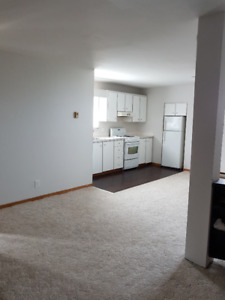 bright, spacious 1 bedroom for rent. Free parking