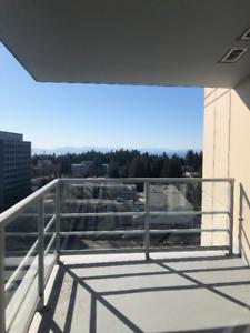 1 Bedroom Summer Sublet - UBC Campus