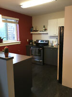 Bachelor Apartment for Sublet