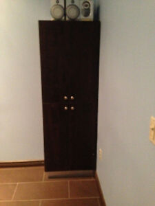 BROWN STORAGE CABINET - PRICED TO GO!
