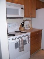 Furnished condo TWO bathrooms (Not basement suite) Aug 1 Dntn