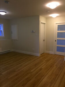 Downtown, 1 Bedroom Apartment