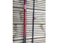 Carp rod