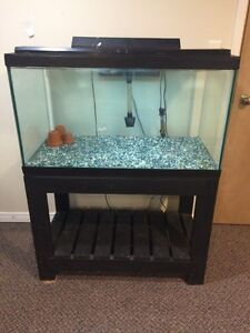 Fish tank with stand, pump, heater & lamp!!!