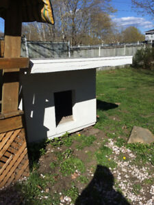 Dog House for larger dog