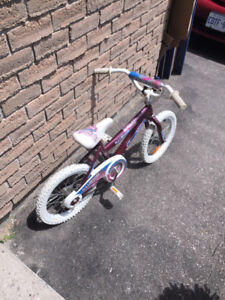 Two Kid Bikes! (Ages 3-5)