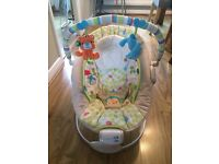 Universal baby bounver