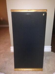 Acoustic Research TSW-410 Stereo Speakers - Oak Oakville / Halton Region Toronto (GTA) image 1