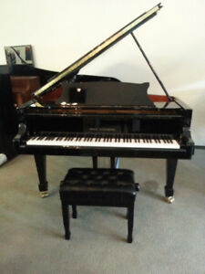 """Wilh. Steinberg Grand Piano - 6'2"""""""