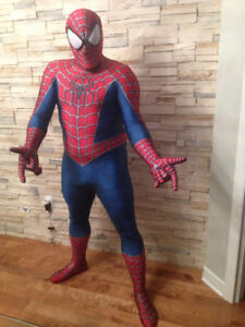 Animation Spider-man