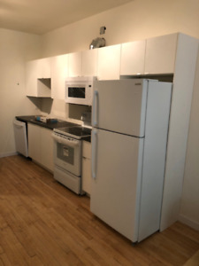 1/2 month free rent - North Wolseley 3 bed - Fully renovated