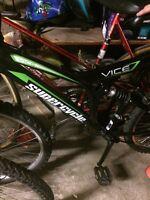 Velo supercycle