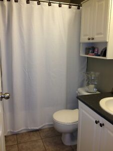 For Rent Campbell River Comox Valley Area image 6
