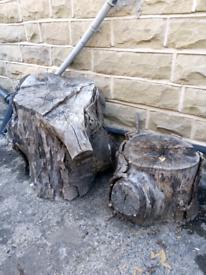 Free!! Large tree stumps