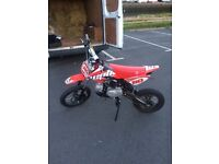 For sale Welsh pit bike 110 stomp