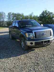 2011 Ford F150 5.0 V8. Low km. Extra factory warranty up to 2018