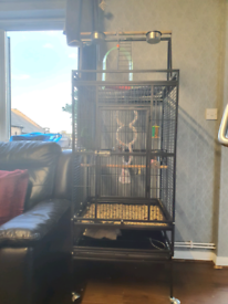 Bird parrot cage on wheels very gd