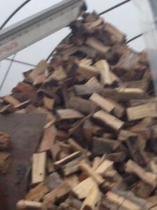 dry firewood stored inside, free delivery including NE London