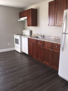 3 Bedroom Renovated Bible Hill